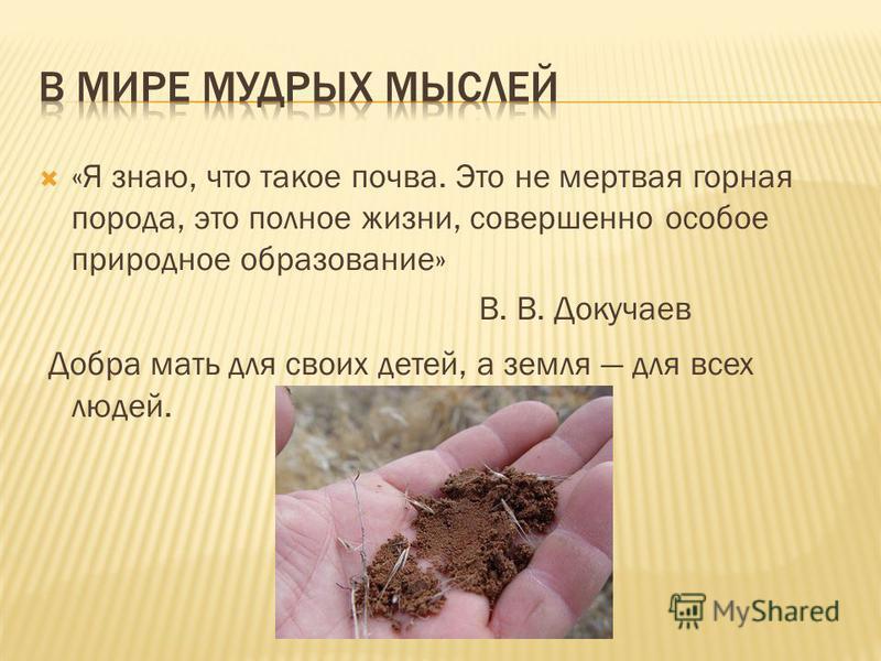 «Я знаю, что такое почва. Это не мертвая горная порода, это полное жизни, совершенно особое природное образование» В. В. Докучаев Добра мать для своих детей, а земля для всех людей.
