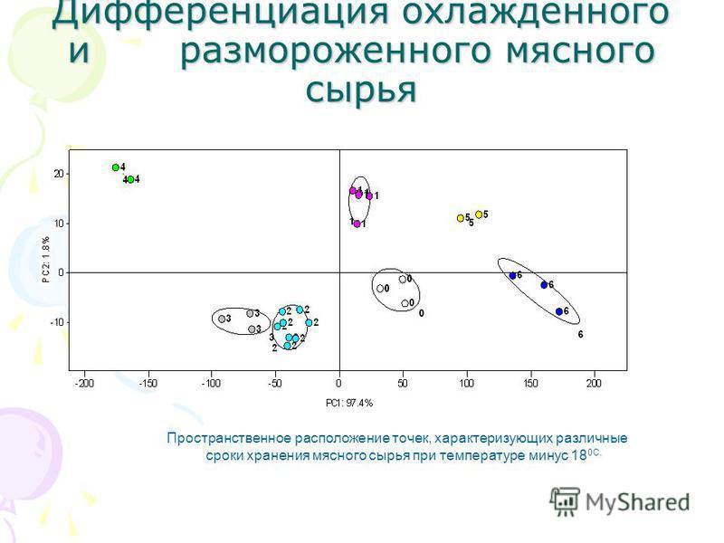 Пространственное расположение точек, характеризующих различные сроки хранения мясного сырья при температуре минус 18 0С.