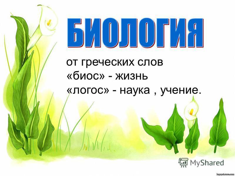 от греческих слов «биос» - жизнь «логос» - наука, учение.
