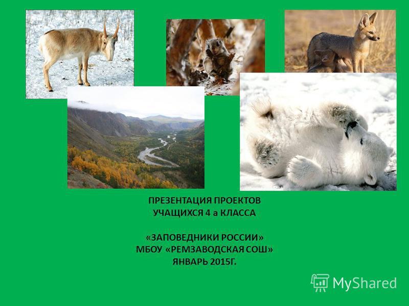ПРЕЗЕНТАЦИЯ ПРОЕКТОВ УЧАЩИХСЯ 4 а КЛАССА «ЗАПОВЕДНИКИ РОССИИ» МБОУ «РЕМЗАВОДСКАЯ СОШ» ЯНВАРЬ 2015Г.