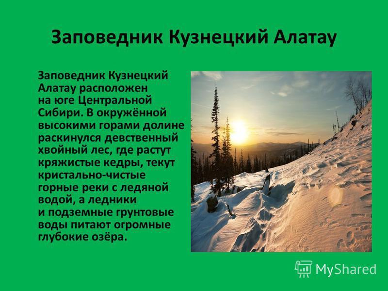 Заповедник Кузнецкий Алатау Заповедник Кузнецкий Алатау расположен на юге Центральной Сибири. В окружённой высокими горами долине раскинулся девственный хвойный лес, где растут кряжистые кедры, текут кристально-чистые горные реки с ледяной водой, а л
