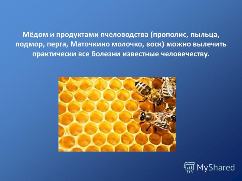 Мёдом и продуктами пчеловодства (прополис, пыльца, подмор, перга, Маточкино молочко, воск) можно вылечить практически все болезни известные человечеству.