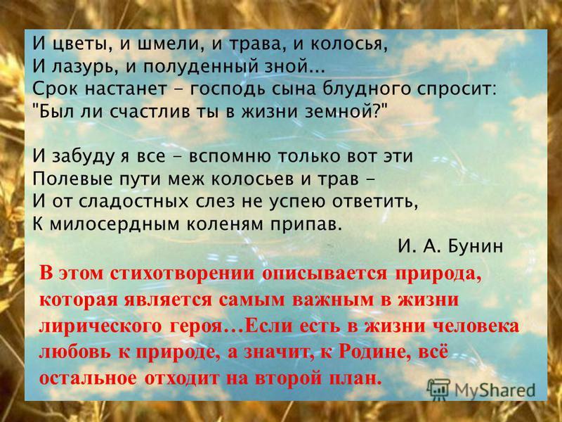 И цветы, и шмели, и трава, и колосья, И лазурь, и полуденный зной... Срок настанет - господь сына блудного спросит: