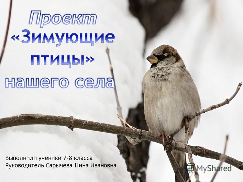 Выполнили ученики 7-8 класса Руководитель Сарычева Нина Ивановна