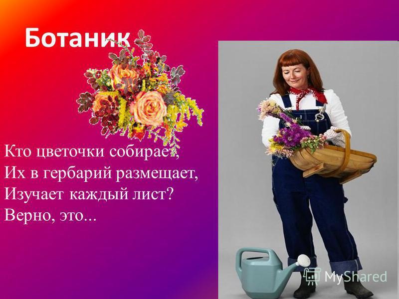 Ботаник Кто цветочки собирает, Их в гербарий размещает, Изучает каждый лист? Верно, это...