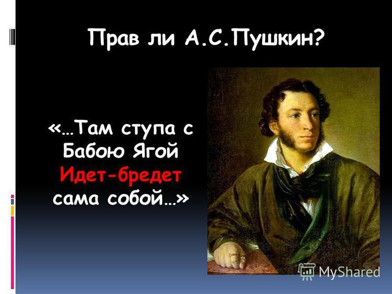 Прав ли А.С.Пушкин? «…Там ступа с Бабою Ягой Идет-бредет сама собой…»