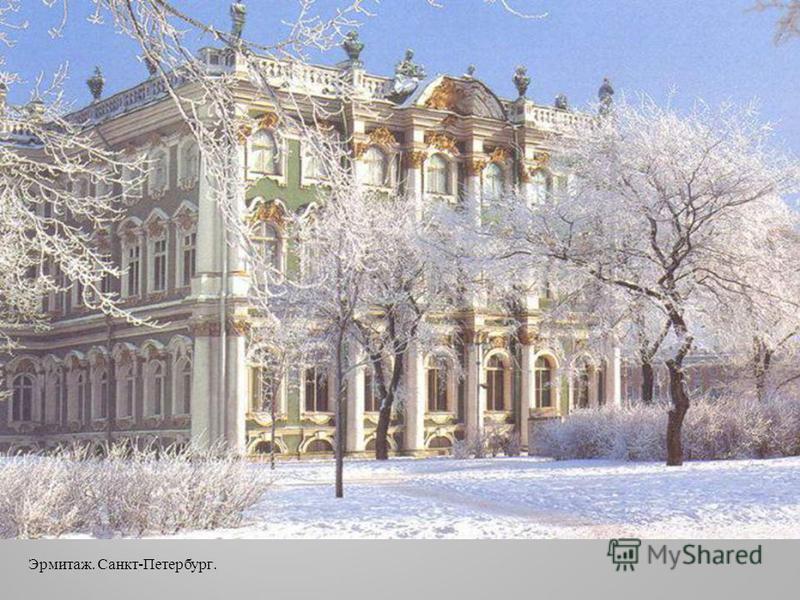 Эрмитаж. Санкт - Петербург.
