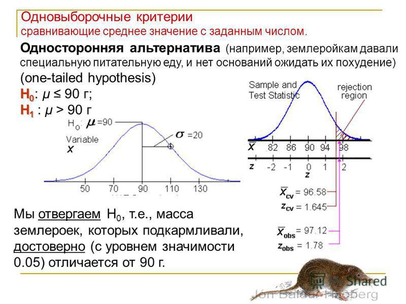 Одновыборочные критерии сравнивающие среднее значение с заданным числом. Односторонняя альтернатива (например, землеройкам давали специальную питательную еду, и нет оснований ожидать их похудение) (one-tailed hypothesis) H 0 H 0 : μ 90 г; H 1 H 1 : μ