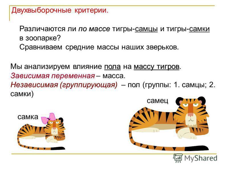 самка самец по массе Различаются ли по массе тигры-самцы и тигры-самки в зоопарке? Сравниваем средние массы наших зверьков. поламассу тигров Мы анализируем влияние пола на массу тигров. Зависимая переменная Зависимая переменная – масса. Независимая (