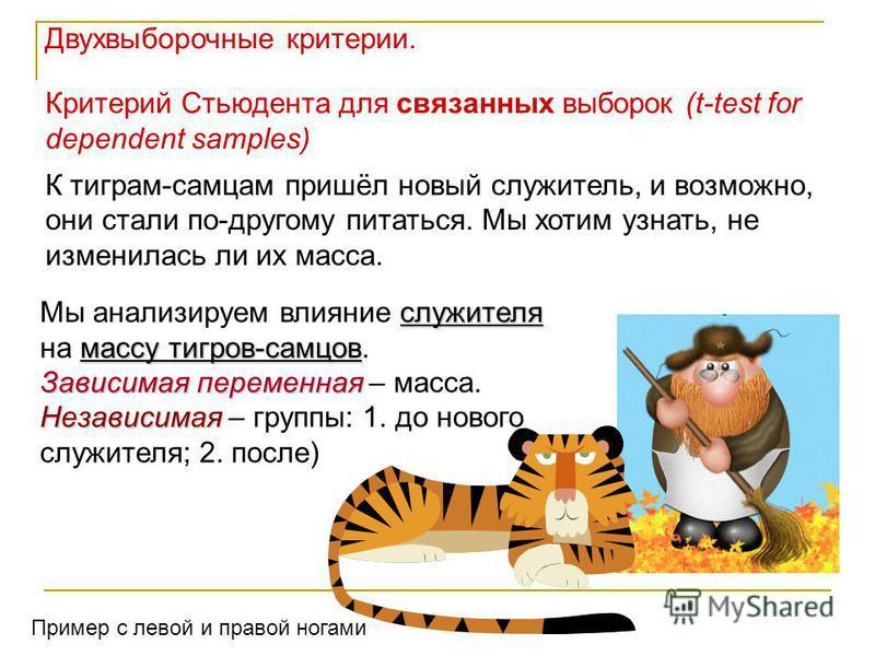 Критерий Стьюдента для связанных выборок (t-test for dependent samples) К тиграм-самцам пришёл новый служитель, и возможно, они стали по-другому питаться. Мы хотим узнать, не изменилась ли их масса. служителя массу тигров-самцов Мы анализируем влияни