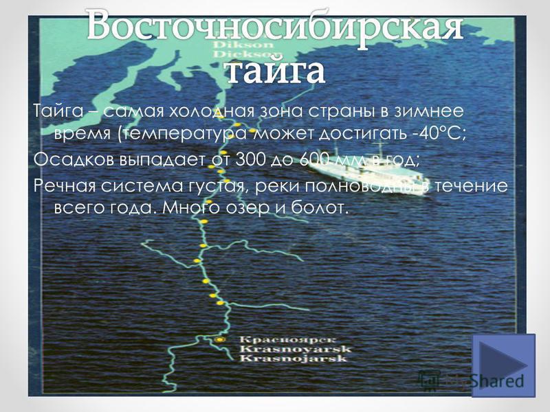 Тайга – самая холодная зона страны в зимнее время (температура может достигать -40°С; Осадков выпадает от 300 до 600 мм в год; Речная система густая, реки полноводны в течение всего года. Много озер и болот.