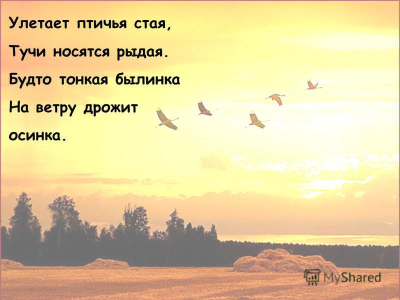Улетает птичья стая, Тучи носятся рыдая. Будто тонкая былинка На ветру дрожит осинка.