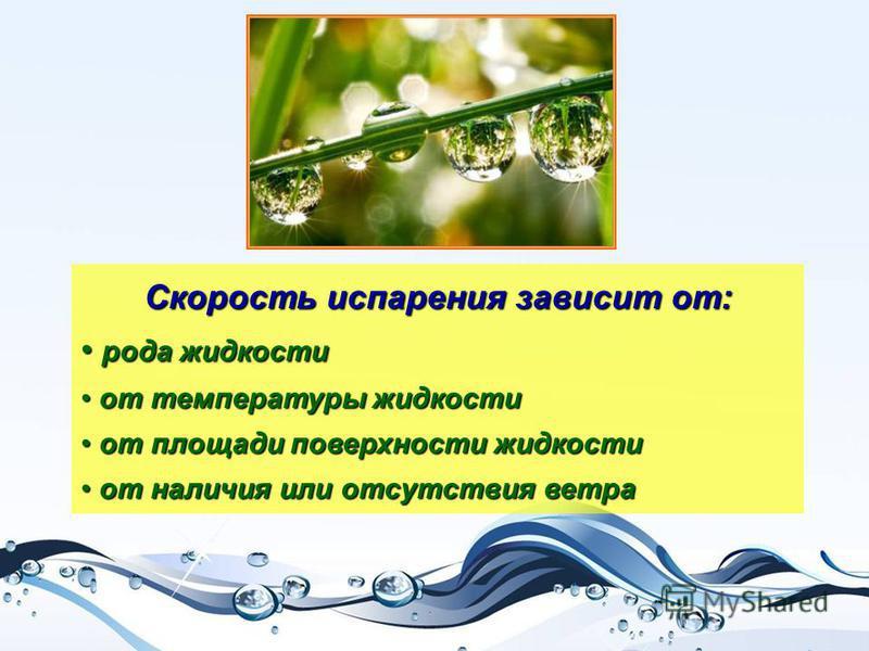 Скорость испарения зависит от: р рода жидкости о от температуры жидкости т площади поверхности жидкости т наличия или отсутствия ветра
