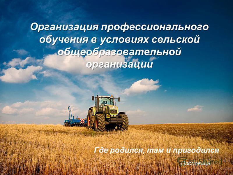 Организация профессионального обучения в условиях сельской общеобразовательной организации Где родился, там и пригодился Пословица