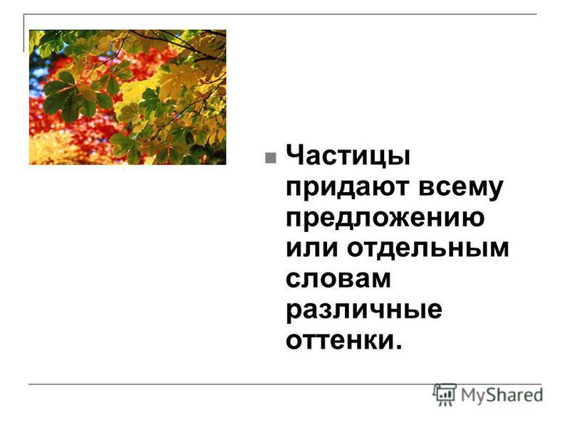 Частицы придают всему предложению или отдельным словам различные оттенки.