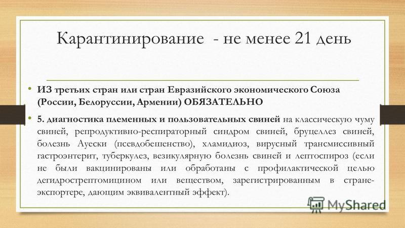 Карантинирование - не менее 21 день ИЗ третьих стран или стран Евразийского экономического Союза (России, Белоруссии, Армении) ОБЯЗАТЕЛЬНО 5. диагностика племенных и пользовательных свиней на классическую чуму свиней, репродуктивно-респираторный синд