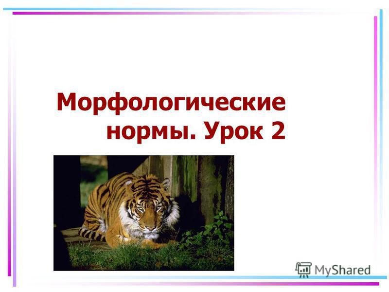 Морфологические нормы. Урок 2
