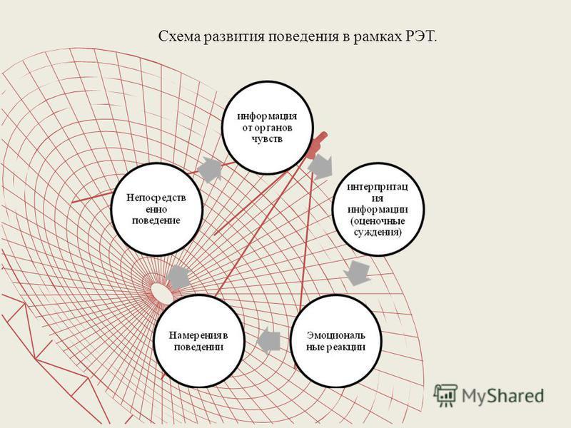 Схема развития поведения в рамках РЭТ.
