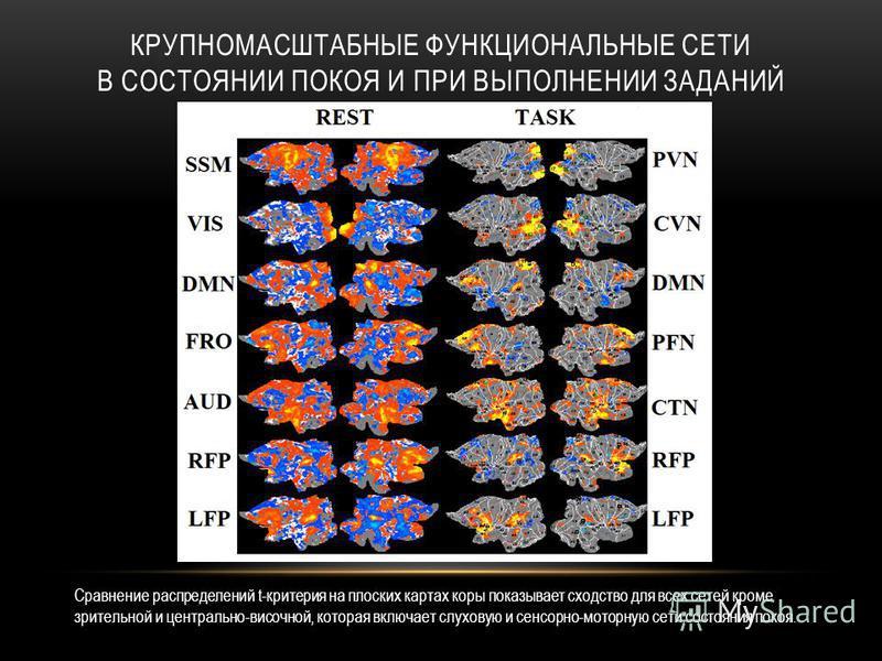 КРУПНОМАСШТАБНЫЕ ФУНКЦИОНАЛЬНЫЕ СЕТИ В СОСТОЯНИИ ПОКОЯ И ПРИ ВЫПОЛНЕНИИ ЗАДАНИЙ Сравнение распределений t-критерия на плоских картах коры показывает сходство для всех сетей кроме зрительной и центрально-височной, которая включает слуховую и сенсорно-