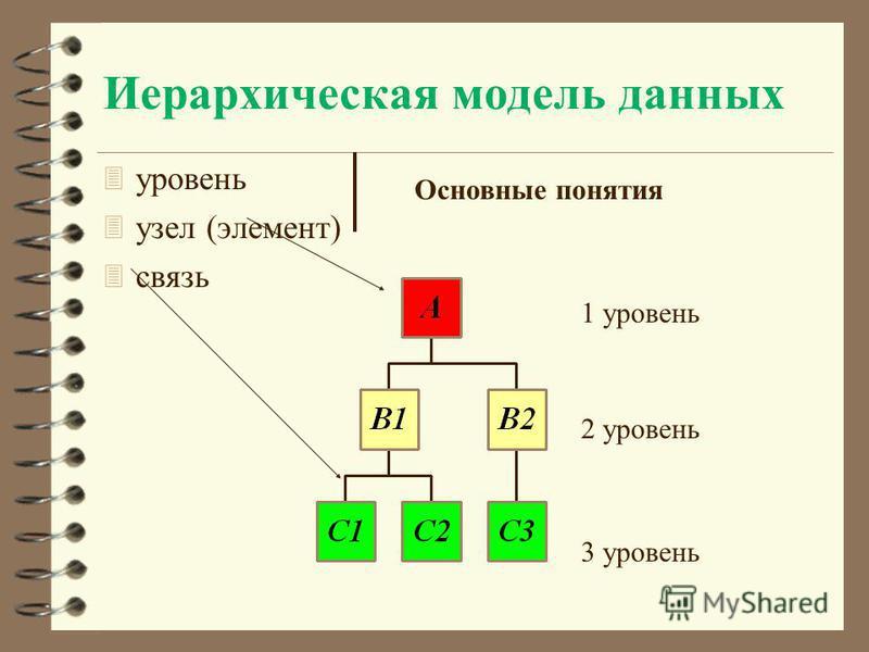 Иерархическая модель данных 3 уровень 3 узел (элемент) 3 связь Основные понятия 1 уровень 2 уровень 3 уровень
