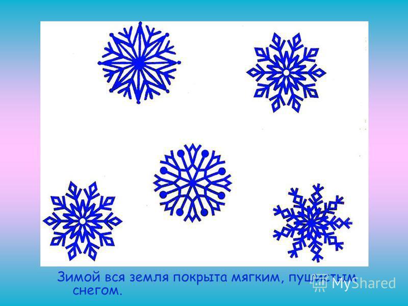 Зимой вся земля покрыта мягким, пушистым снегом.