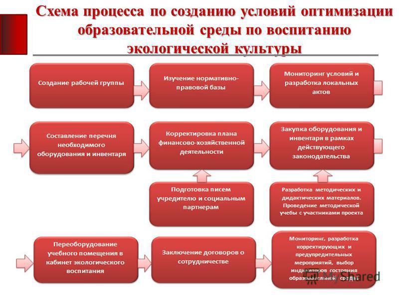 Схема процесса по созданию условий оптимизации образовательной среды по воспитанию экологической культуры
