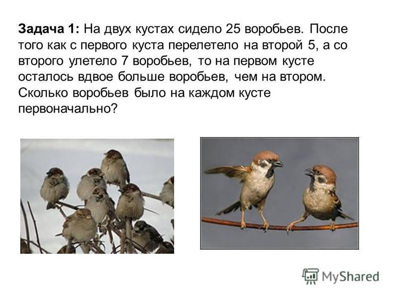Задача 1: На двух кустах сидело 25 воробьев. После того как с первого куста перелетело на второй 5, а со второго улетело 7 воробьев, то на первом кусте осталось вдвое больше воробьев, чем на втором. Сколько воробьев было на каждом кусте первоначально