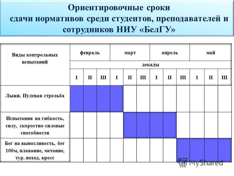 Ориентировочные сроки сдачи нормативов среди студентов, преподавателей и сотрудников НИУ «БелГУ»