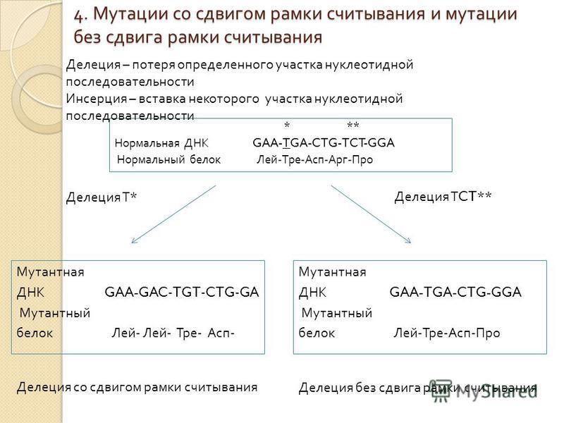 4. Мутации со сдвигом рамки считывания и мутации без сдвига рамки считывания * ** Нормальная ДНК GAA-TGA-CTG-TCT-GGA Нормальный белок Лей - Тре - Асп - Арг - Про Делеция – потеря определенного участка нуклеотидной последовательности Инсерция – вставк