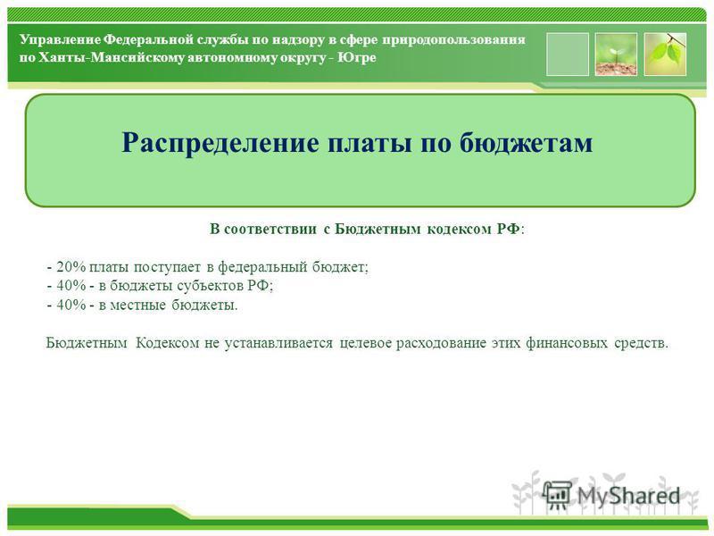 www.themegallery.com Распределение платы по бюджетам В соответствии с Бюджетным кодексом РФ: - 20% платы поступает в федеральный бюджет; - 40% - в бюджеты субъектов РФ; - 40% - в местные бюджеты. Бюджетным Кодексом не устанавливается целевое расходов