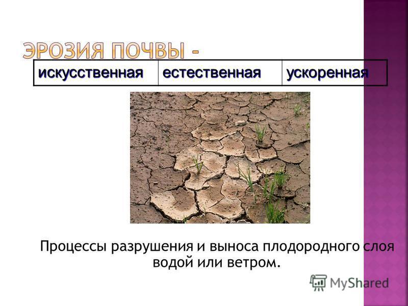 искусственная естественная ускоренная Процессы разрушения и выноса плодородного слоя водой или ветром.
