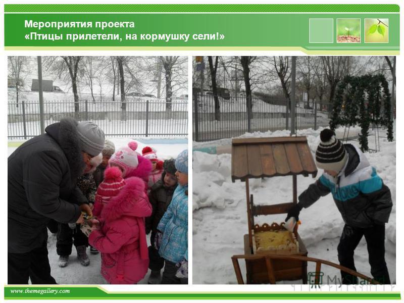 www.themegallery.com Мероприятия проекта «Птицы прилетели, на кормушку сели!»