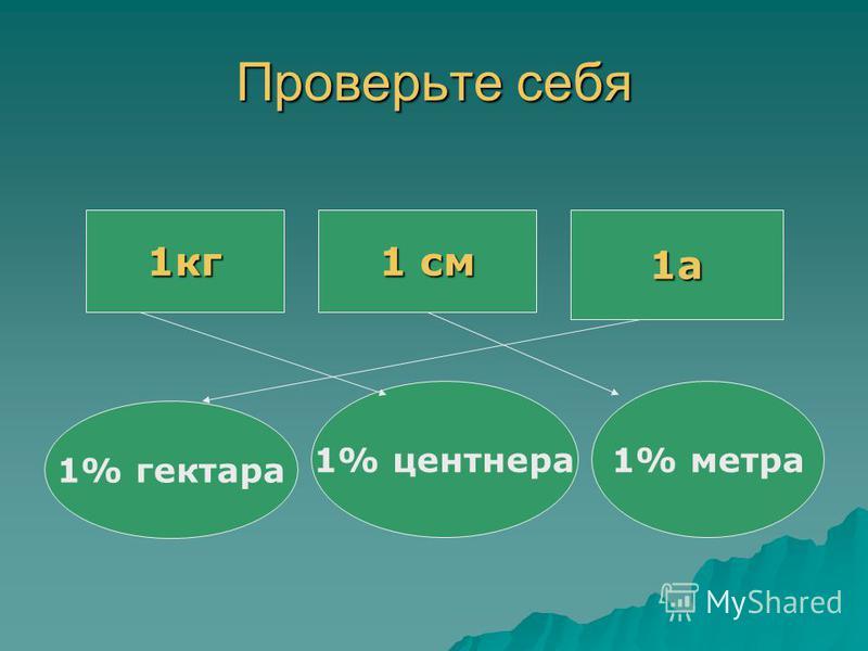 Проверьте себя 1 кг 1 см 1 а 1% гектара 1% центнера 1% метра 1 кг