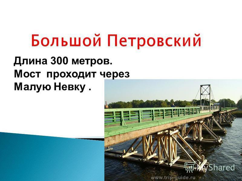 Длина 300 метров. Мост проходит через Малую Невку.