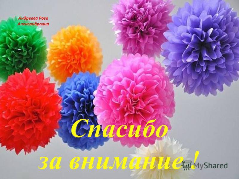 Спасибо за внимание ! Андреева Роза Александровна