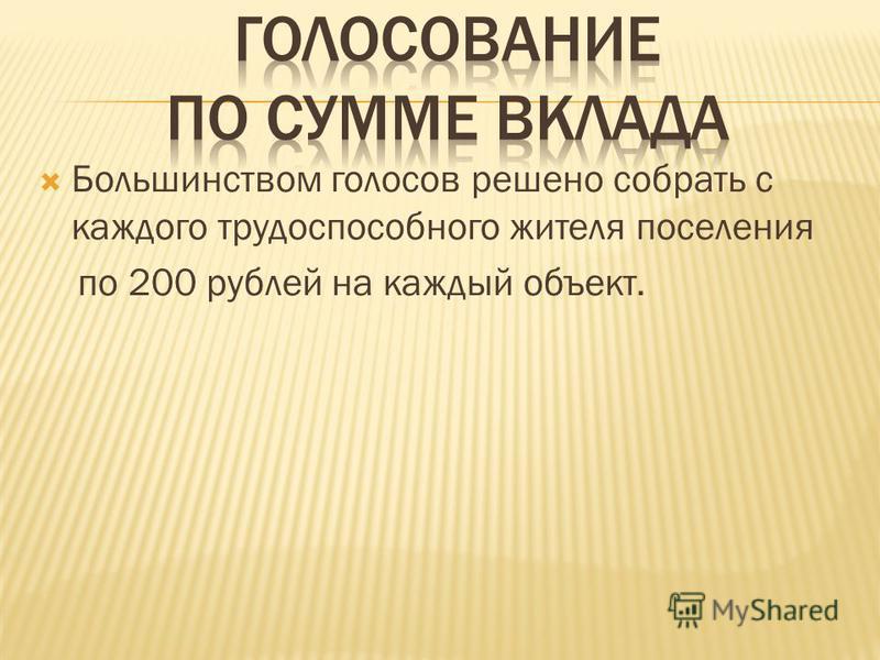 Большинством голосов решено собрать с каждого трудоспособного жителя поселения по 200 рублей на каждый объект.