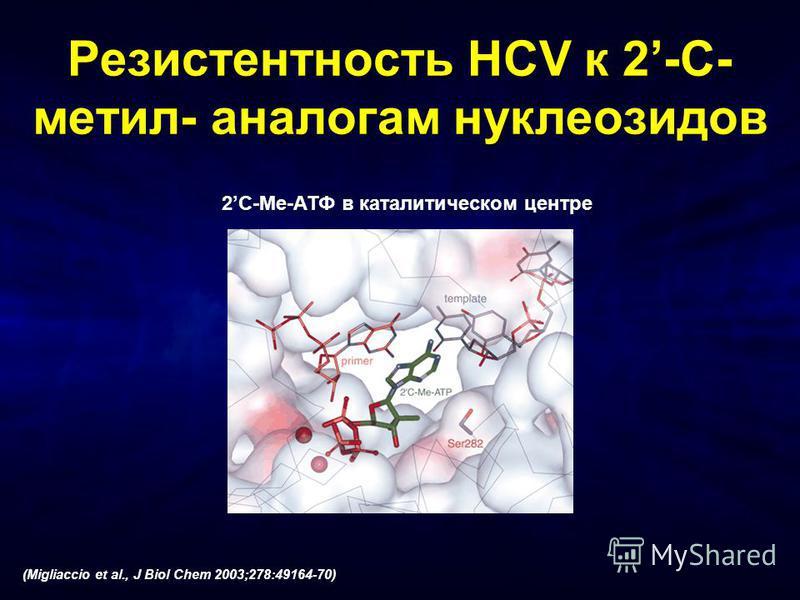 2C-Me-АТФ в каталитическом центре (Migliaccio et al., J Biol Chem 2003;278:49164-70) Резистентность HCV к 2-C- метил- аналогам нуклеозидов
