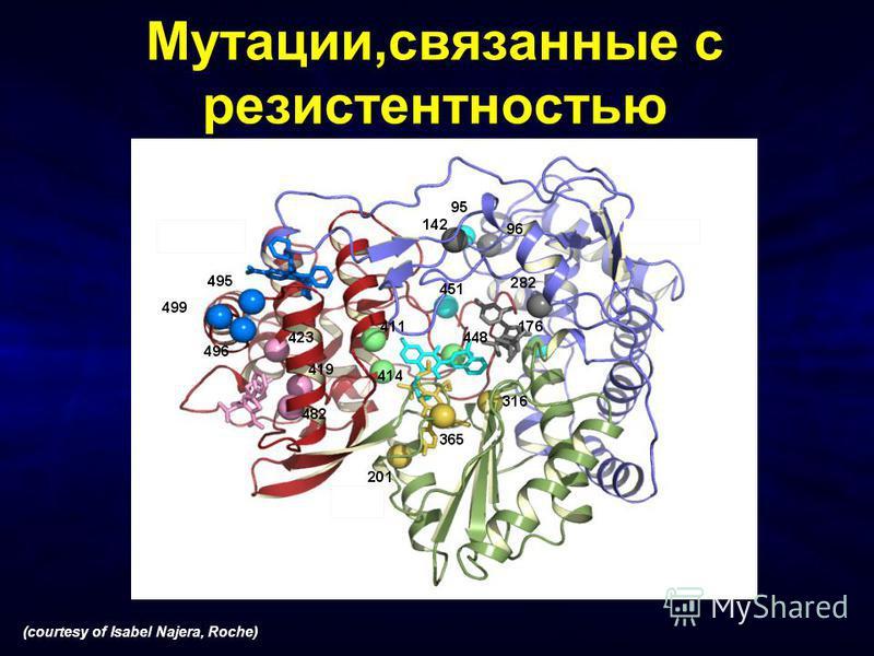 Мутации,связанные с резистентностью (courtesy of Isabel Najera, Roche) Fingers Thumb Palm