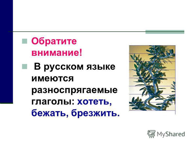 Обратите внимание! В русском языке имеются разноспрягаемые глаголы: хототь, бежать, брезжить.