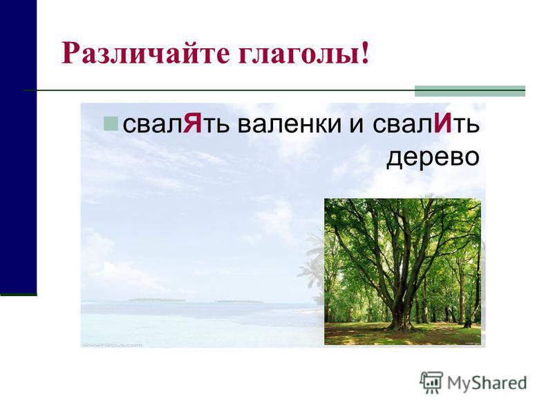 Различайте глаголы! свал Ять валенки и свал Ить дерево