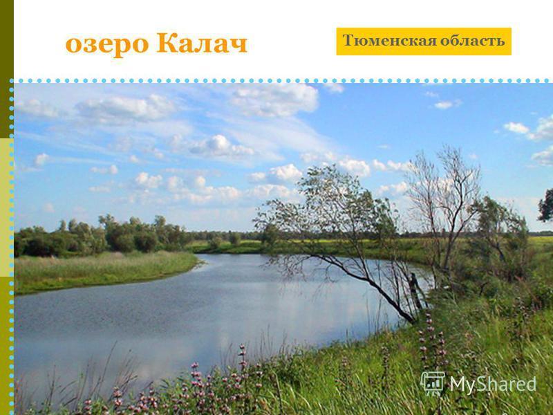 озеро Калач Тюменская область