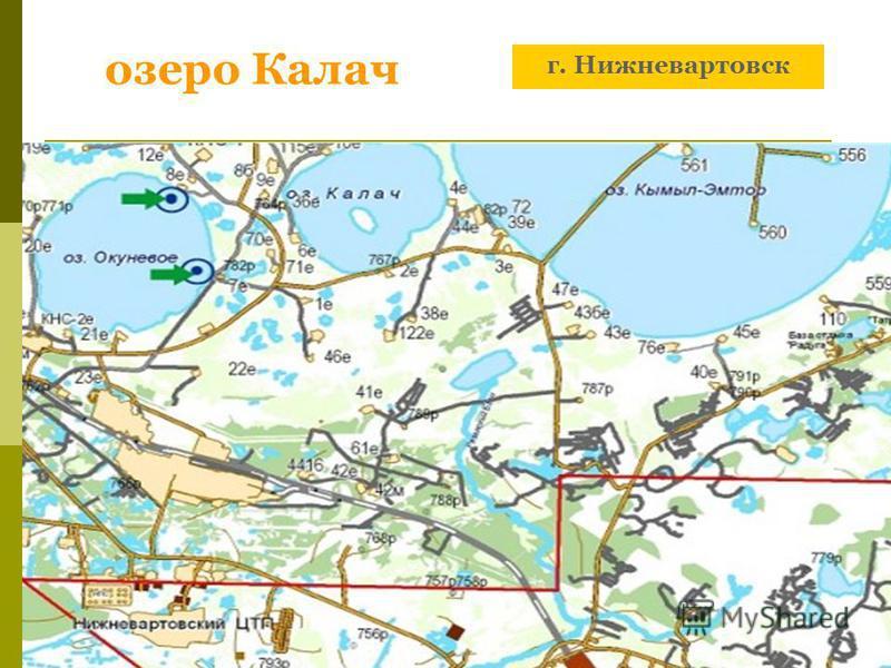 озеро Калач г. Нижневартовск