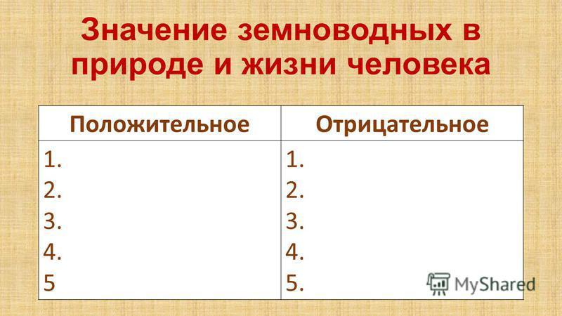 Значение земноводных в природе и жизни человека Положительное Отрицательное 1. 2. 3. 4. 5 1. 2. 3. 4. 5.