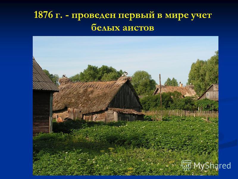 1876 г. - проведен первый в мире учет белых аистов