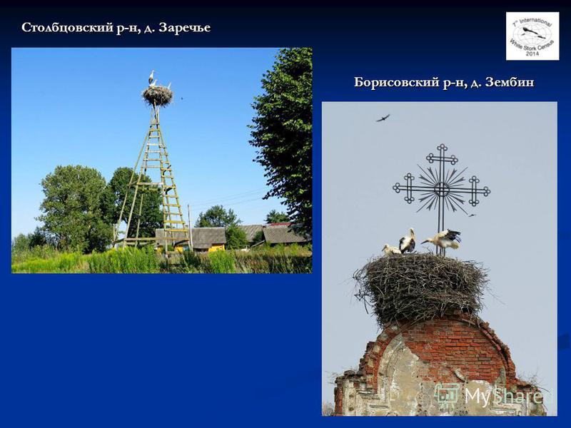 32 Борисовский р-н, д. Зембин Столбцовский р-н, д. Заречье