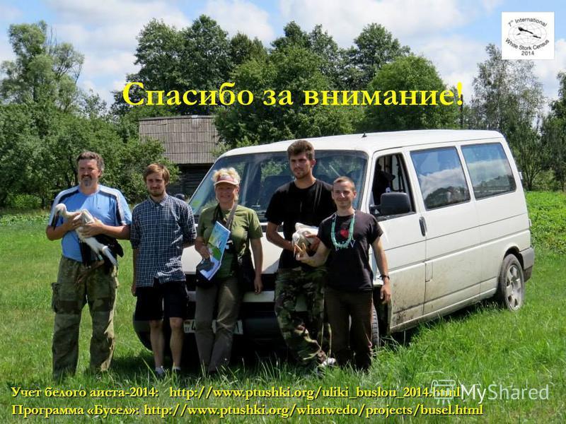 36 Спасибо за внимание! Программа «Бусел»: http://www.ptushki.org/whatwedo/projects/busel.html Учет белого аиста-2014: http://www.ptushki.org/uliki_buslou_2014.html