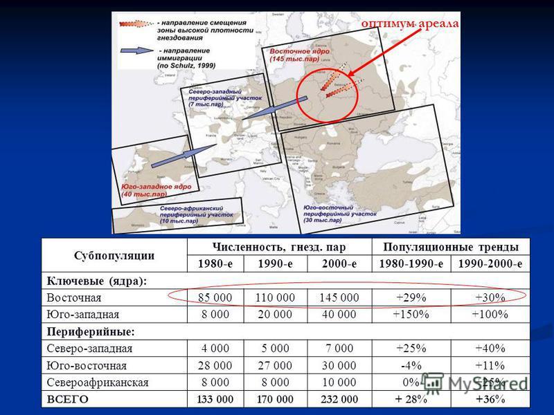 Субпопуляции Численность, гнезд. пар Популяционные тренды 1980-е 1990-е 2000-е 1980-1990-е 1990-2000-е Ключевые (ядра): Восточная 85 000110 000145 000+29%+30% Юго-западная 8 00020 00040 000+150%+100% Периферийные: Северо-западная 4 0005 0007 000+25%+