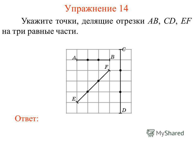 Упражнение 14 Укажите точки, делящие отрезки AB, CD, EF на три равные части. Ответ: