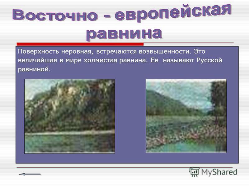 Поверхность неровная, встречаются возвышенности. Это величайшая в мире холмистая равнина. Её называют Русской равниной.