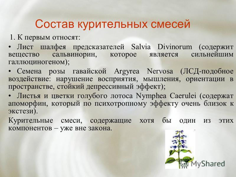 Состав курительных смесей 1. К первым относят: Лист шалфея предсказателей Salvia Divinorum (содержит вещество сальвинорин, которое является сильнейшим галлюциногеном); Семена розы гавайской Argyrea Nervosa (ЛСД-подобное воздействие: нарушение восприя